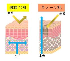 水道水 肌 影響